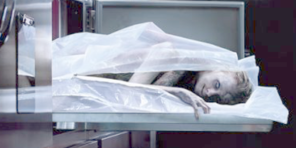 3-cadaveer