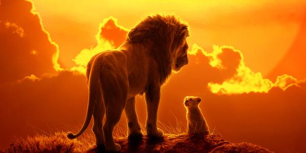 600x300-rey-leon